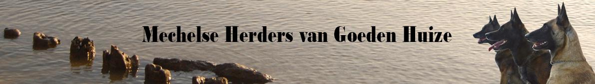 Kennel Van Goeden Huize